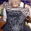 Fuchsia Spider